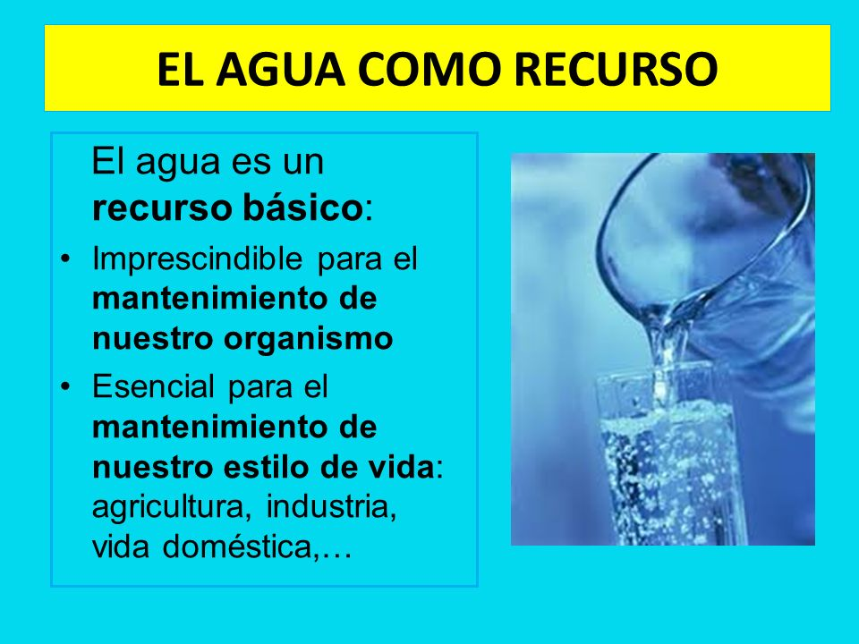 EL AGUA COMO RECURSO El agua es un recurso básico: Imprescindible para el mantenimiento de nuestro organismo Esencial para el mantenimiento de nuestro