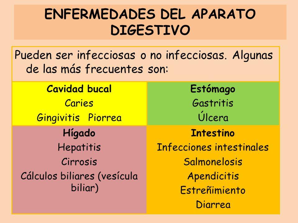 Pueden ser infecciosas o no infecciosas. Algunas de las más frecuentes son: ENFERMEDADES DEL APARATO DIGESTIVO Cavidad bucal Caries Gingivitis Piorrea