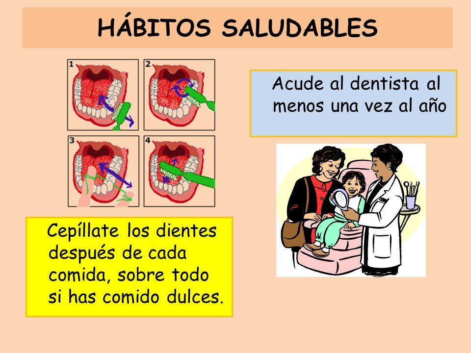 HÁBITOS SALUDABLES Acude al dentista al menos una vez al año Cepíllate los dientes después de cada comida, sobre todo si has comido dulces.