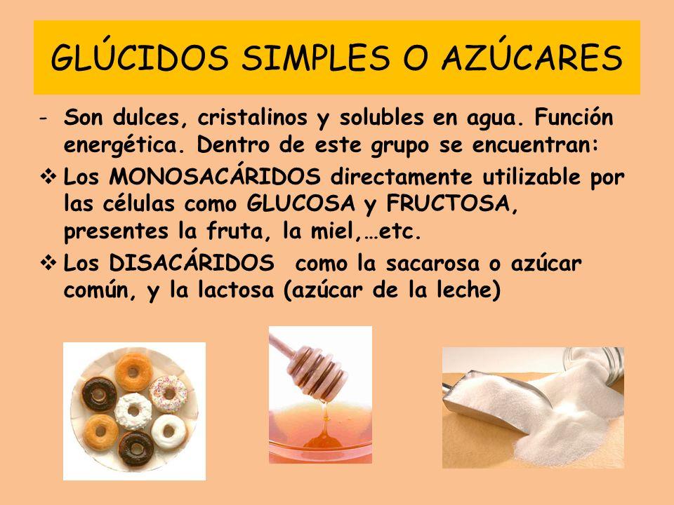 GLÚCIDOS SIMPLES O AZÚCARES -Son dulces, cristalinos y solubles en agua. Función energética. Dentro de este grupo se encuentran: Los MONOSACÁRIDOS dir