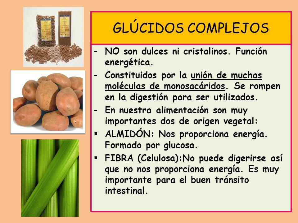 GLÚCIDOS COMPLEJOS -NO son dulces ni cristalinos. Función energética. -Constituidos por la unión de muchas moléculas de monosacáridos. Se rompen en la