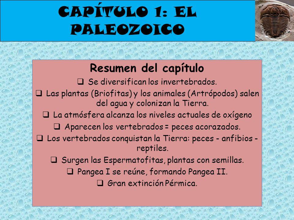 CAPÍTULO 1: EL PALEOZOICO Resumen del capítulo Se diversifican los invertebrados. Las plantas (Briofitas) y los animales (Artrópodos) salen del agua y