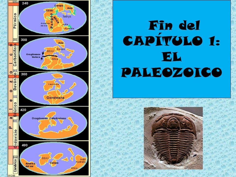 Fin del CAPÍTULO 1: EL PALEOZOICO