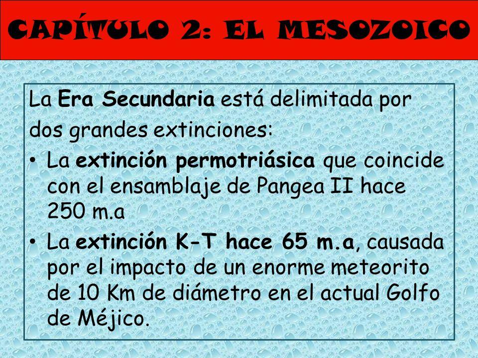 La Era Secundaria está delimitada por dos grandes extinciones: La extinción permotriásica que coincide con el ensamblaje de Pangea II hace 250 m.a La