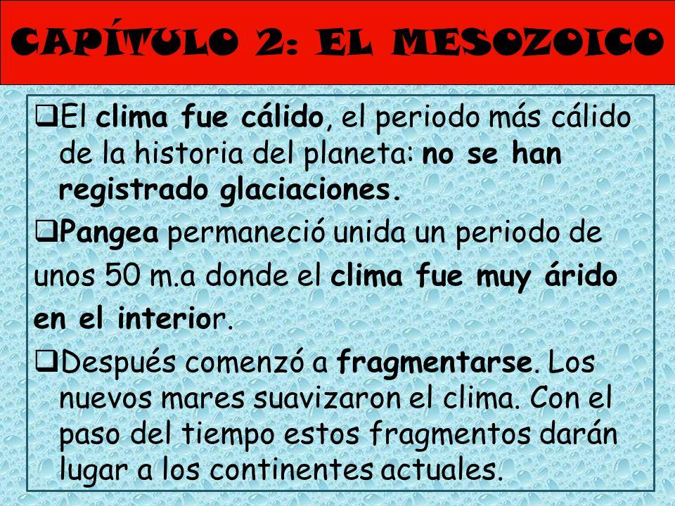 CAPÍTULO 2: EL MESOZOICO El clima fue cálido, el periodo más cálido de la historia del planeta: no se han registrado glaciaciones. Pangea permaneció u