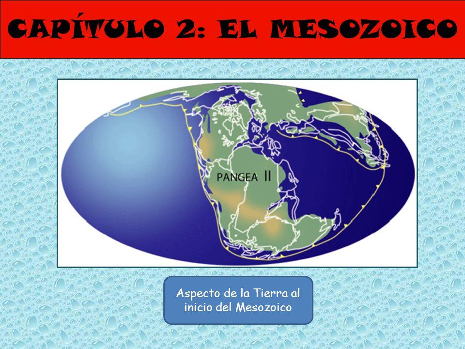 CAPÍTULO 2: EL MESOZOICO Aspecto de la Tierra al inicio del Mesozoico
