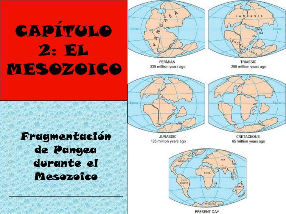 CAPÍTULO 2: EL MESOZOICO Fragmentación de Pangea durante el Mesozoico