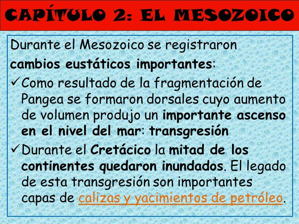 CAPÍTULO 2: EL MESOZOICO Durante el Mesozoico se registraron cambios eustáticos importantes: Como resultado de la fragmentación de Pangea se formaron
