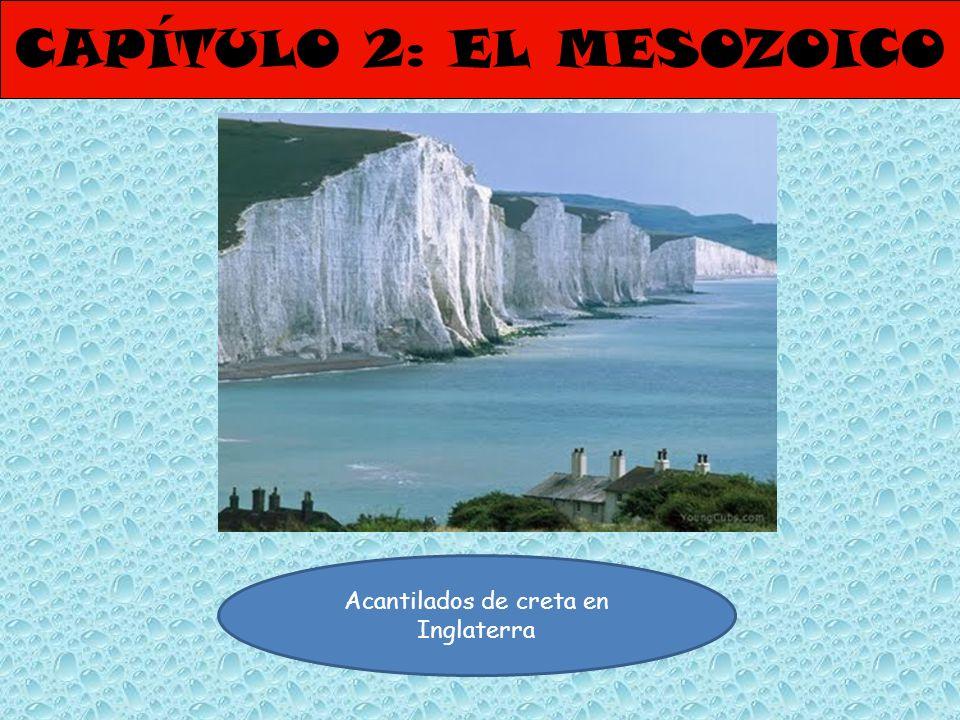 CAPÍTULO 2: EL MESOZOICO Acantilados de creta en Inglaterra