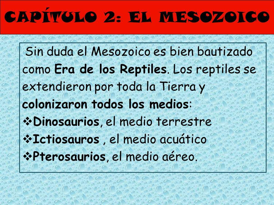 CAPÍTULO 2: EL MESOZOICO Sin duda el Mesozoico es bien bautizado como Era de los Reptiles. Los reptiles se extendieron por toda la Tierra y colonizaro