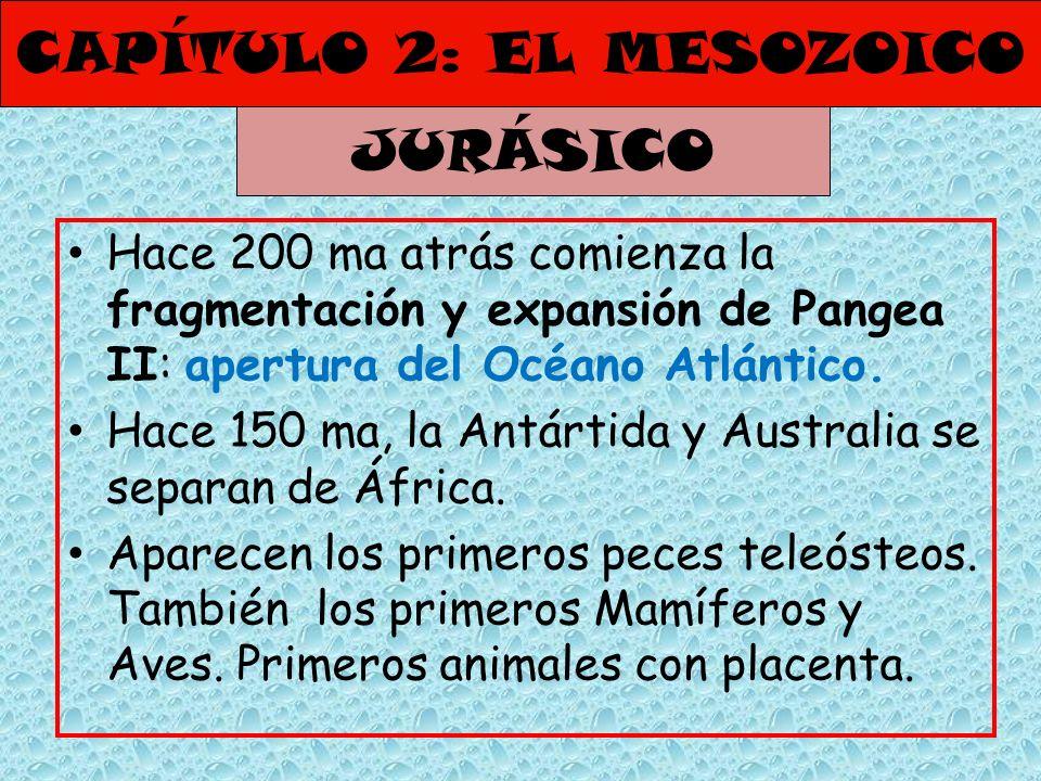 CAPÍTULO 2: EL MESOZOICO Hace 200 ma atrás comienza la fragmentación y expansión de Pangea II: apertura del Océano Atlántico. Hace 150 ma, la Antártid