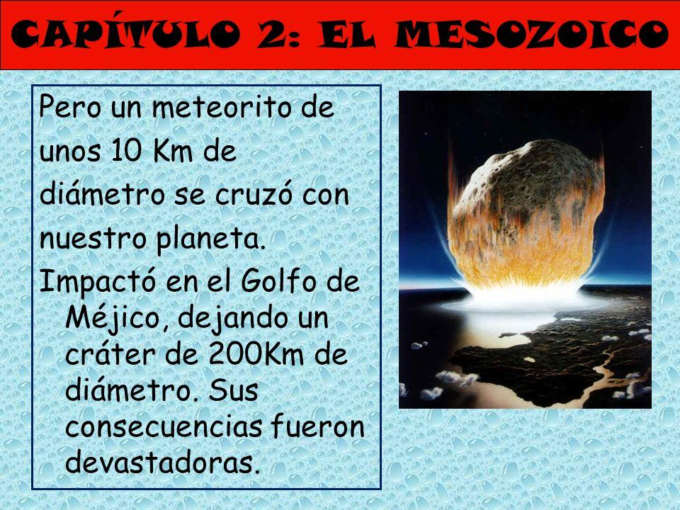 CAPÍTULO 2: EL MESOZOICO Pero un meteorito de unos 10 Km de diámetro se cruzó con nuestro planeta. Impactó en el Golfo de Méjico, dejando un cráter de