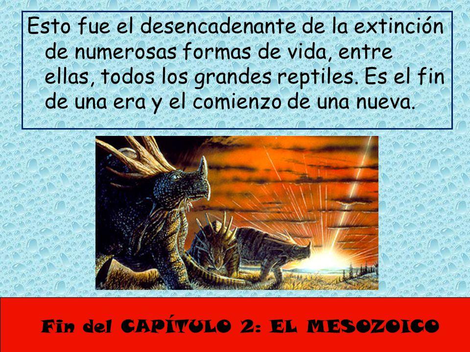Fin del CAPÍTULO 2: EL MESOZOICO Esto fue el desencadenante de la extinción de numerosas formas de vida, entre ellas, todos los grandes reptiles. Es e