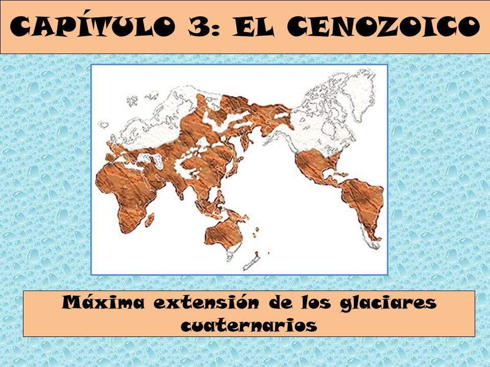 CAPÍTULO 3: EL CENOZOICO Máxima extensión de los glaciares cuaternarios