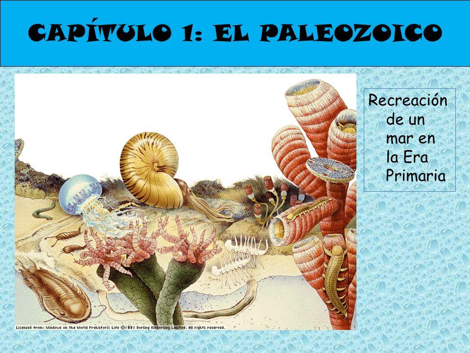 CAPÍTULO 1: EL PALEOZOICO Recreación de un mar en la Era Primaria