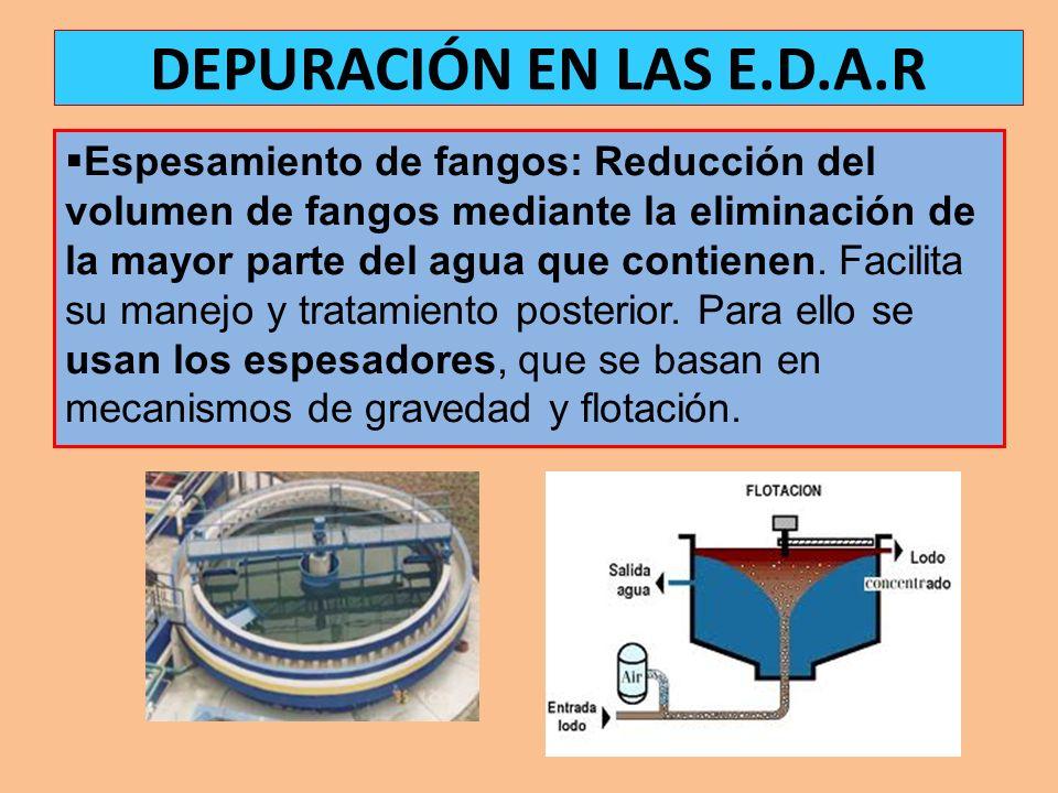Espesamiento de fangos: Reducción del volumen de fangos mediante la eliminación de la mayor parte del agua que contienen. Facilita su manejo y tratami