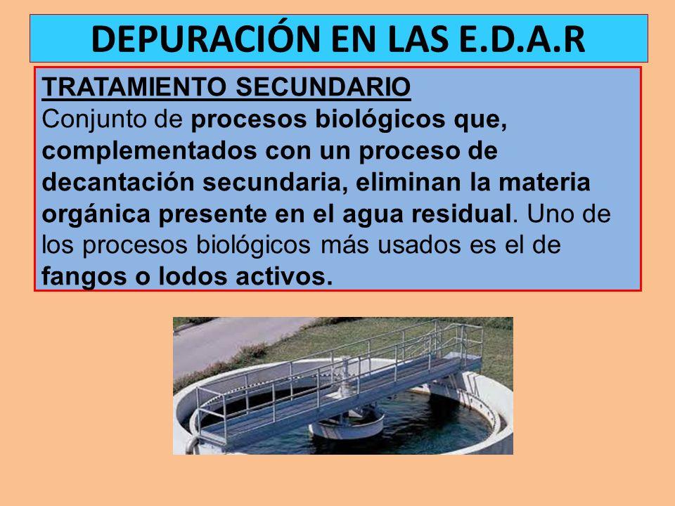TRATAMIENTO SECUNDARIO Conjunto de procesos biológicos que, complementados con un proceso de decantación secundaria, eliminan la materia orgánica pres
