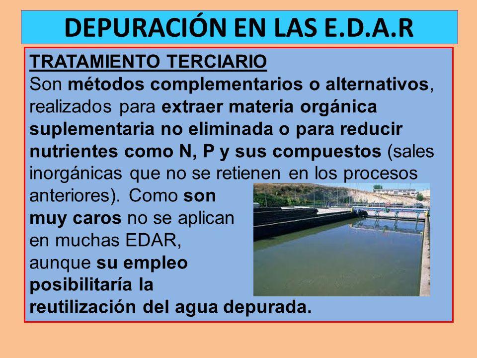 TRATAMIENTO TERCIARIO Son métodos complementarios o alternativos, realizados para extraer materia orgánica suplementaria no eliminada o para reducir n