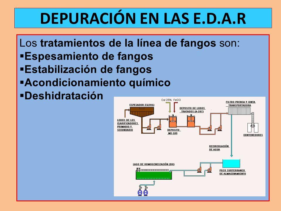 Espesamiento de fangos: Reducción del volumen de fangos mediante la eliminación de la mayor parte del agua que contienen.