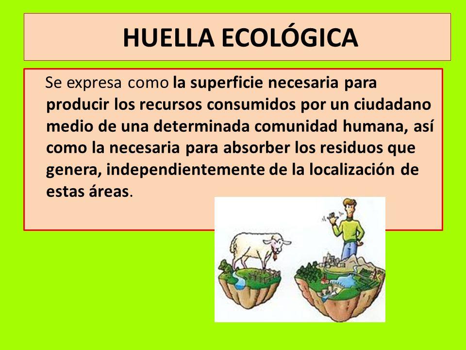 HUELLA ECOLÓGICA Se expresa como la superficie necesaria para producir los recursos consumidos por un ciudadano medio de una determinada comunidad hum