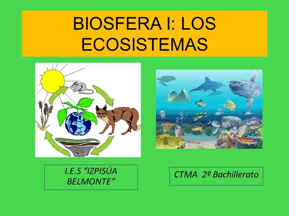 BIOSFERA I: LOS ECOSISTEMAS I.E.S IZPISÚA BELMONTE CTMA 2º Bachillerato