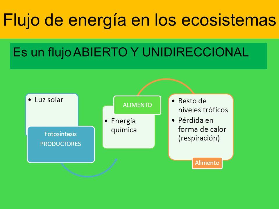 Flujo de energía en los ecosistemas Es un flujo ABIERTO Y UNIDIRECCIONAL Luz solar Fotosíntesis PRODUCTORES Energía química ALIMENTO Resto de niveles