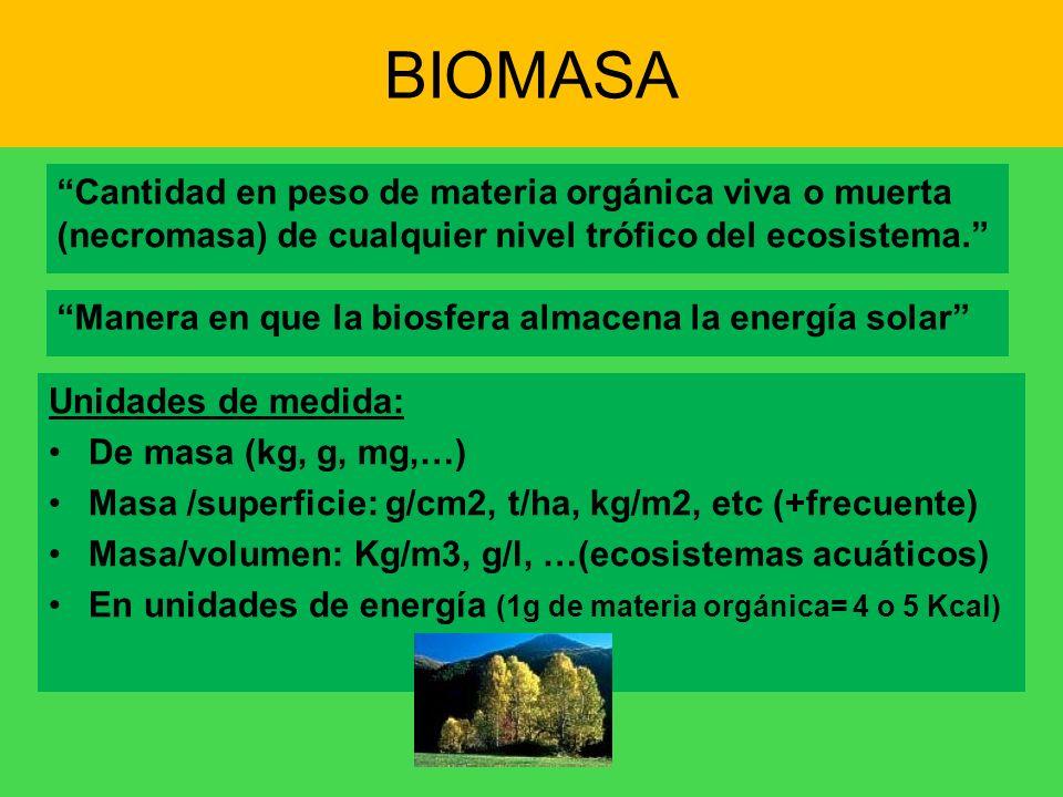 BIOMASA Cantidad en peso de materia orgánica viva o muerta (necromasa) de cualquier nivel trófico del ecosistema. Manera en que la biosfera almacena l