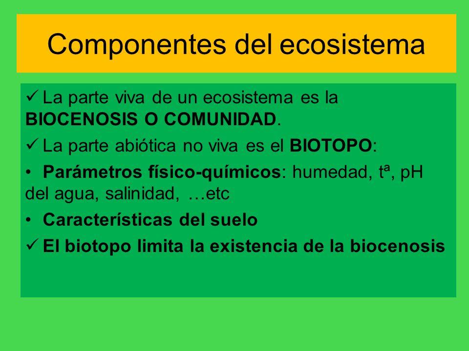 Componentes del ecosistema La parte viva de un ecosistema es la BIOCENOSIS O COMUNIDAD. La parte abiótica no viva es el BIOTOPO: Parámetros físico-quí