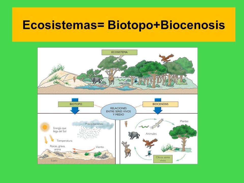 Ecosistemas= Biotopo+Biocenosis