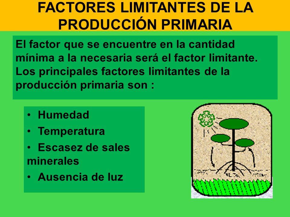 FACTORES LIMITANTES DE LA PRODUCCIÓN PRIMARIA El factor que se encuentre en la cantidad mínima a la necesaria será el factor limitante. Los principale