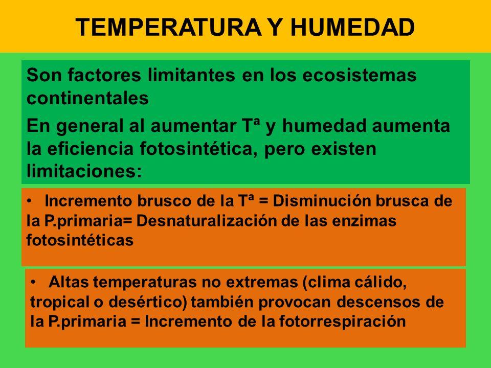 TEMPERATURA Y HUMEDAD Son factores limitantes en los ecosistemas continentales En general al aumentar Tª y humedad aumenta la eficiencia fotosintética
