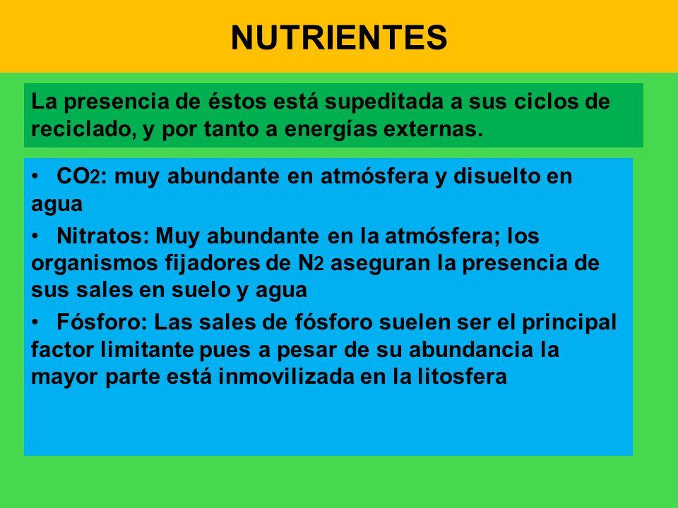 NUTRIENTES La presencia de éstos está supeditada a sus ciclos de reciclado, y por tanto a energías externas. CO 2 : muy abundante en atmósfera y disue