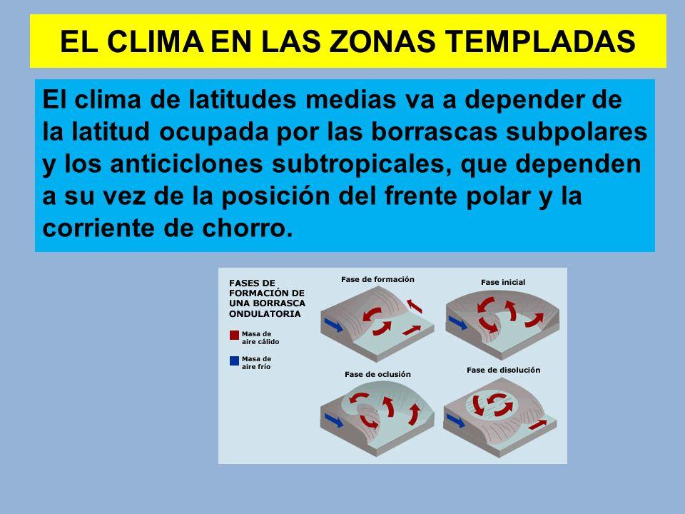 EL CLIMA EN LAS ZONAS TEMPLADAS El clima de latitudes medias va a depender de la latitud ocupada por las borrascas subpolares y los anticiclones subtr