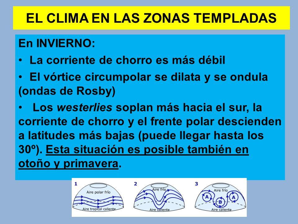 EL CLIMA EN LAS ZONAS TEMPLADAS En INVIERNO: La corriente de chorro es más débil El vórtice circumpolar se dilata y se ondula (ondas de Rosby) Los wes