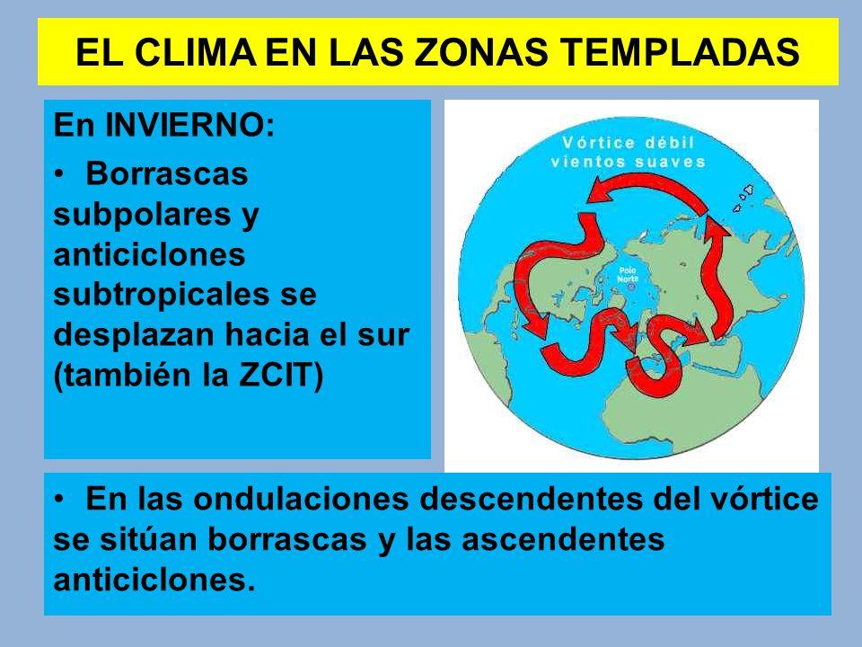 EL CLIMA EN LAS ZONAS TEMPLADAS En INVIERNO: Borrascas subpolares y anticiclones subtropicales se desplazan hacia el sur (también la ZCIT) En las ondu