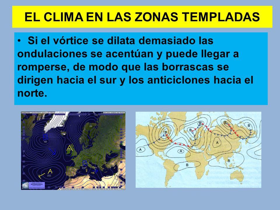 EL CLIMA EN LAS ZONAS TEMPLADAS Si el vórtice se dilata demasiado las ondulaciones se acentúan y puede llegar a romperse, de modo que las borrascas se