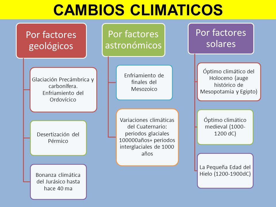 Por factores geológicos Glaciación Precámbrica y carbonífera. Enfriamiento del Ordovícico Desertización del Pérmico Bonanza climática del Jurásico has