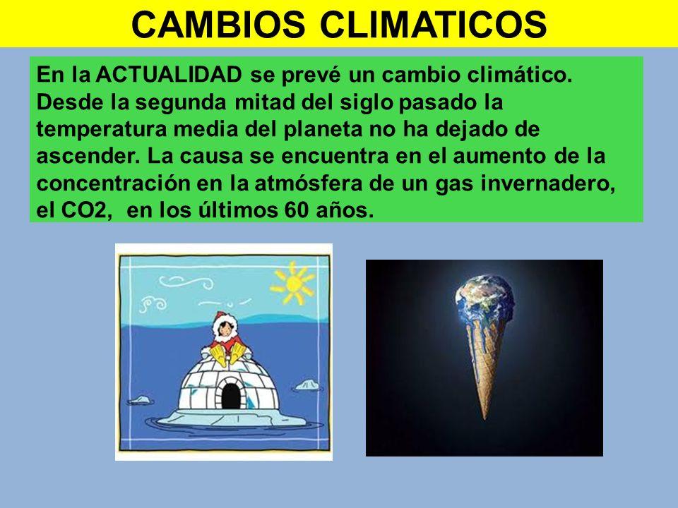 En la ACTUALIDAD se prevé un cambio climático. Desde la segunda mitad del siglo pasado la temperatura media del planeta no ha dejado de ascender. La c
