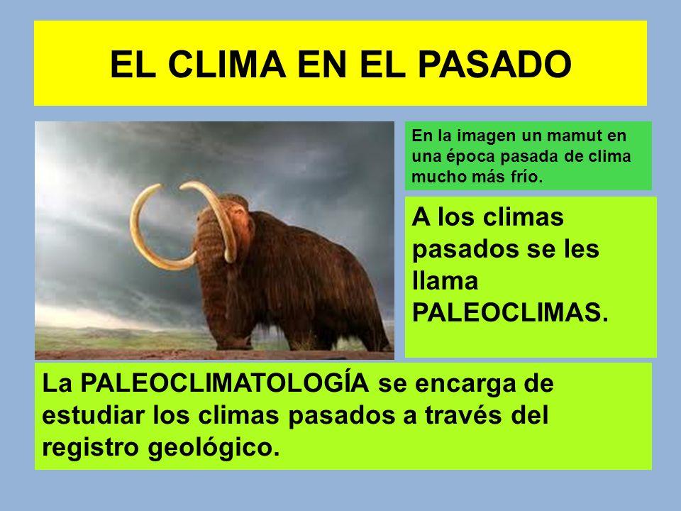 EL CLIMA EN EL PASADO En general se distinguen entre periodos fríos o GLACIACIONES separados por periodos de clima más cálido llamados PERIODOS INTERGLACIALES.