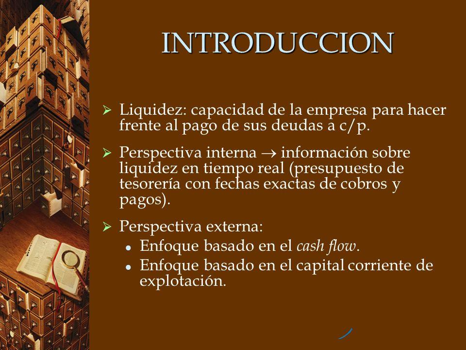 INTRODUCCION Liquidez: capacidad de la empresa para hacer frente al pago de sus deudas a c/p. Perspectiva interna información sobre liquidez en tiempo
