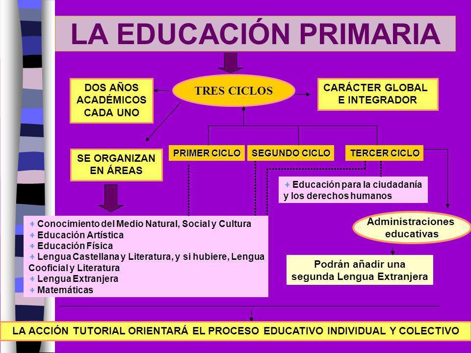 LA EDUCACIÓN PRIMARIA TRES CICLOS DOS AÑOS ACADÉMICOS CADA UNO SE ORGANIZAN EN ÁREAS CARÁCTER GLOBAL E INTEGRADOR Conocimiento del Medio Natural, Soci