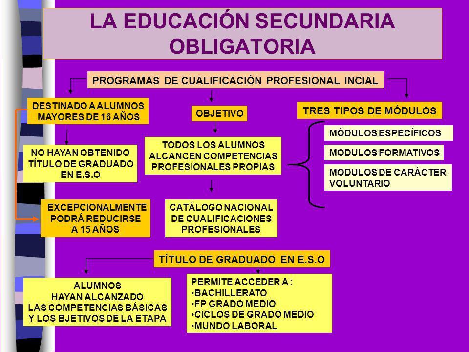LA EDUCACIÓN SECUNDARIA OBLIGATORIA PROGRAMAS DE CUALIFICACIÓN PROFESIONAL INCIAL DESTINADO A ALUMNOS MAYORES DE 16 AÑOS NO HAYAN OBTENIDO TÍTULO DE G