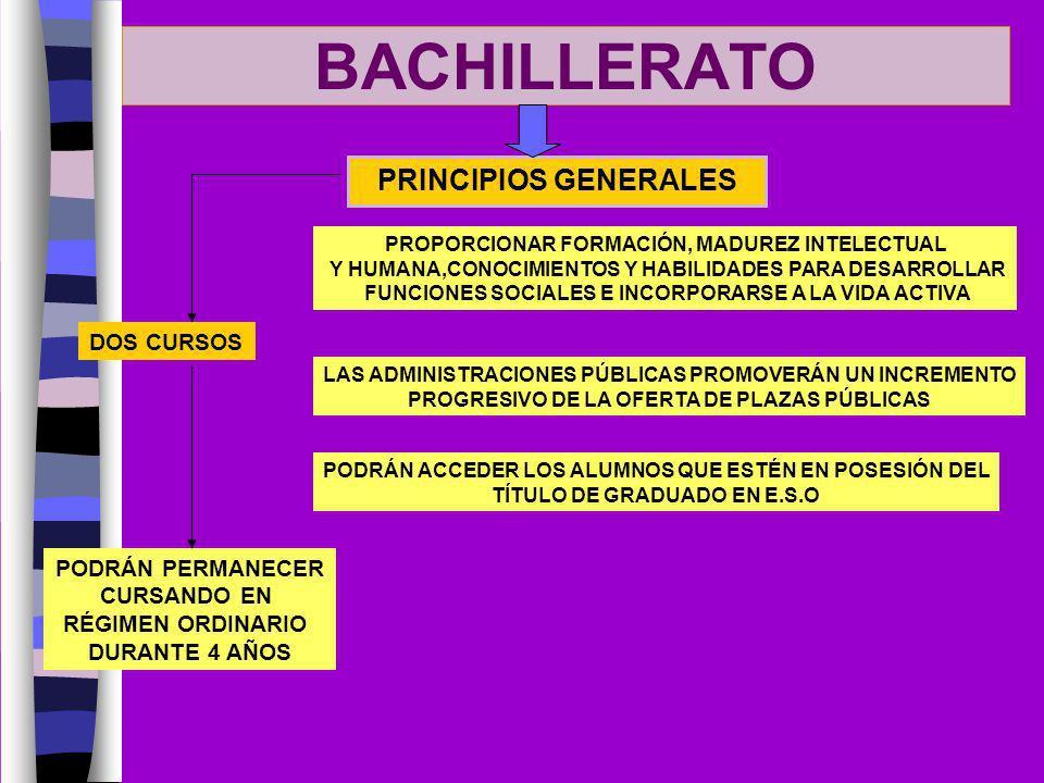 BACHILLERATO PRINCIPIOS GENERALES PROPORCIONAR FORMACIÓN, MADUREZ INTELECTUAL Y HUMANA,CONOCIMIENTOS Y HABILIDADES PARA DESARROLLAR FUNCIONES SOCIALES