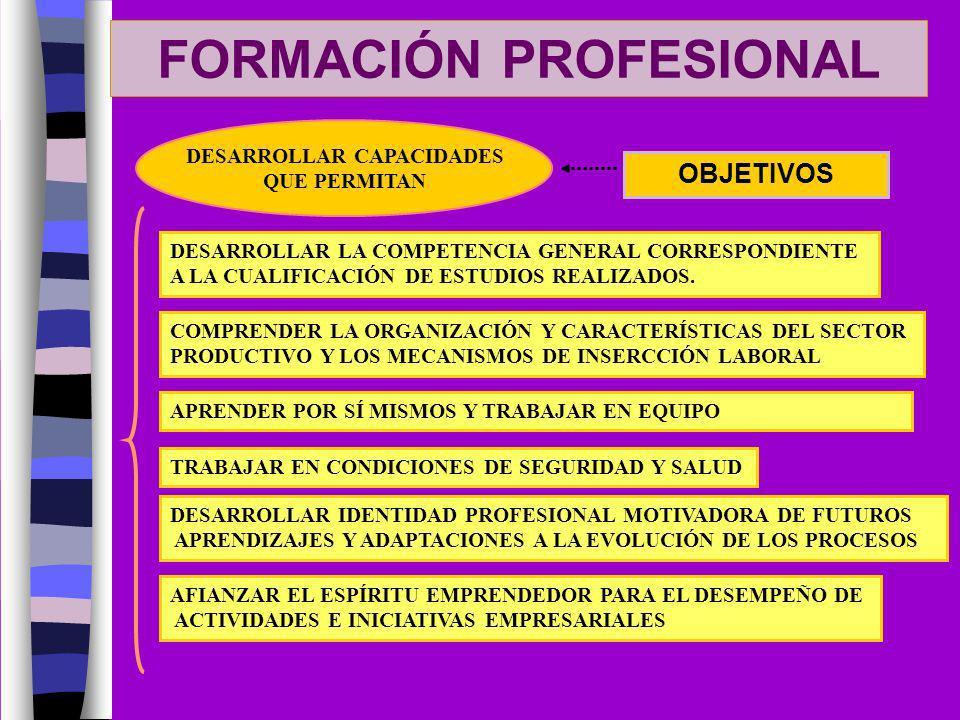 FORMACIÓN PROFESIONAL OBJETIVOS DESARROLLAR CAPACIDADES QUE PERMITAN DESARROLLAR LA COMPETENCIA GENERAL CORRESPONDIENTE A LA CUALIFICACIÓN DE ESTUDIOS