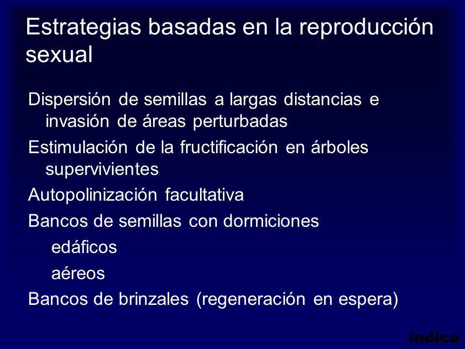 Estrategias basadas en la reproducción sexual Dispersión de semillas a largas distancias e invasión de áreas perturbadas Estimulación de la fructifica