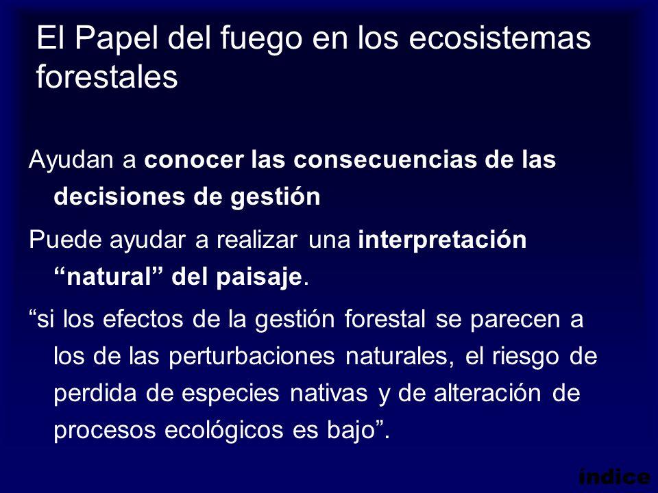 El Papel del fuego en los ecosistemas forestales Ayudan a conocer las consecuencias de las decisiones de gestión Puede ayudar a realizar una interpret