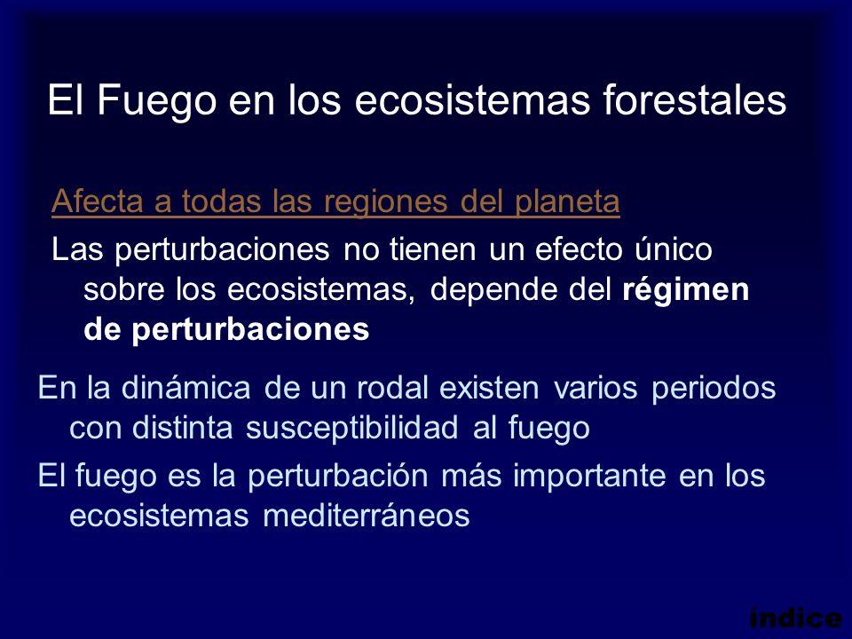Afecta a todas las regiones del planeta Las perturbaciones no tienen un efecto único sobre los ecosistemas, depende del régimen de perturbaciones El F