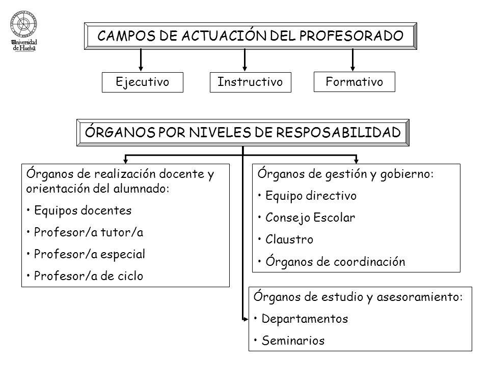 CAMPOS DE ACTUACIÓN DEL PROFESORADO EjecutivoInstructivo Formativo ÓRGANOS POR NIVELES DE RESPOSABILIDAD Órganos de realización docente y orientación