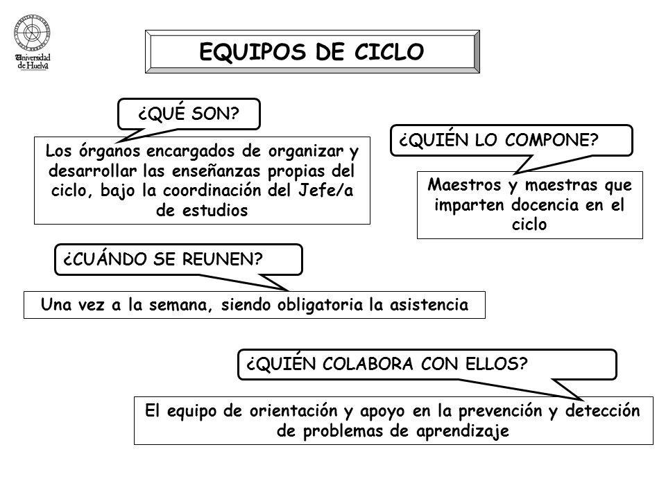 EQUIPOS DE CICLO Los órganos encargados de organizar y desarrollar las enseñanzas propias del ciclo, bajo la coordinación del Jefe/a de estudios ¿QUÉ