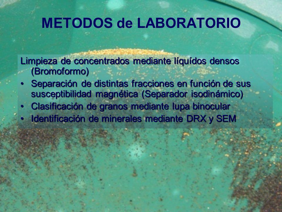 METODOS de LABORATORIO Limpieza de concentrados mediante líquídos densos (Bromoformo) Separación de distintas fracciones en función de sus susceptibil